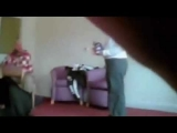 Social workers caught on camera beating and torturing disabled people in care