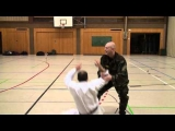 Kung Fu vs Systema Spetsnaz (Special Forces)
