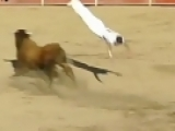 Guy Jumps Over a Bull