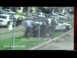 BEST compilation of POLICE brutality in the USA 2