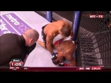 Best Body Shots in MMA