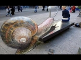 Best of 3D Street Art Illusion – Episode 1 – HD