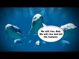 Science Proves Dolphins Call Each Other by Name!
