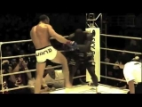 MMA Knockouts 2013 [HD]