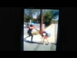 Girl Charged After Fight Caught On Camera – RAW Video