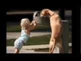 Acts of Kindness Caught on Camera in 2012